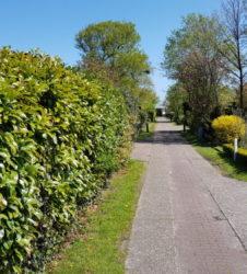 Straat naar bungalow